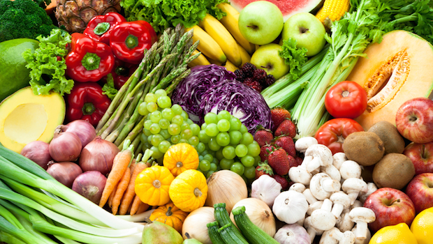 vegetable and fruit plants essay